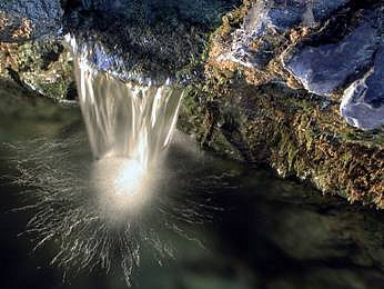 Je voda zLúrd zázračná, svätá?